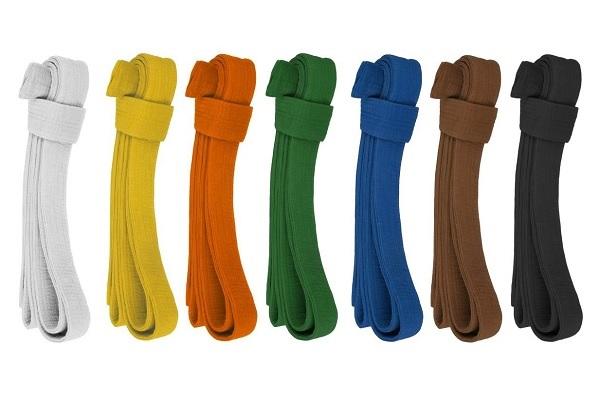 Zkoušky na barevné pásky v karate.
